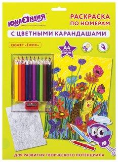 """Раскраска по номерам А4, """"Ежик"""", с цветными карандашами, на картоне"""