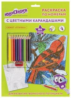 """Раскраска по номерам А4, """"Птичка"""", с цветными карандашами, на картоне  Юнландия"""
