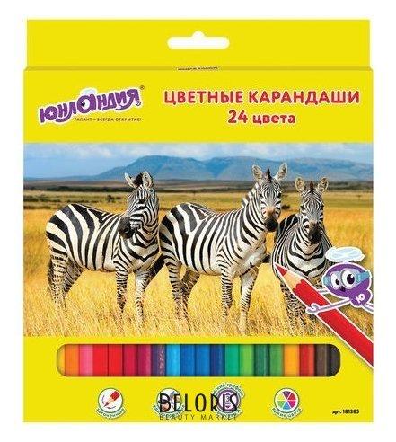 Карандаши цветные 24 цвета Мир животных Юнландия