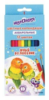 """Карандаши цветные акварельные 12 цветов """"Юный волшебник"""""""