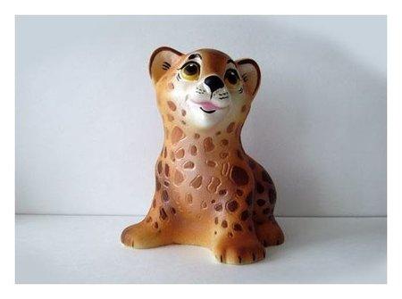 Леопард  Кудесники