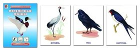 Демонстрационный материал Перелетные птицы