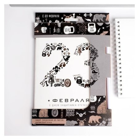 Набор: ежедневник и ручка 23 февраля шрифтовуха ArtFox