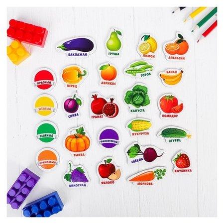 """Развивающие магниты """"Изучаем цвета и овощи - фрукты""""  Лесная мастерская"""