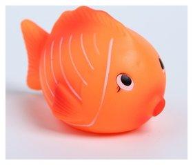 Игрушка для ванны «Чудо-рыбки»