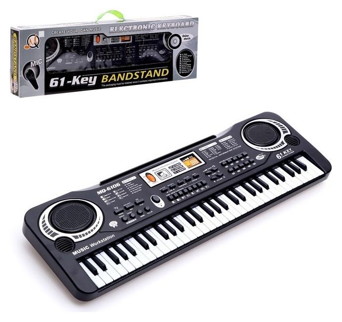 Синтезатор «Клавишник», с микрофоном, 61 клавиша, LED дисплей, от сети  КНР Игрушки