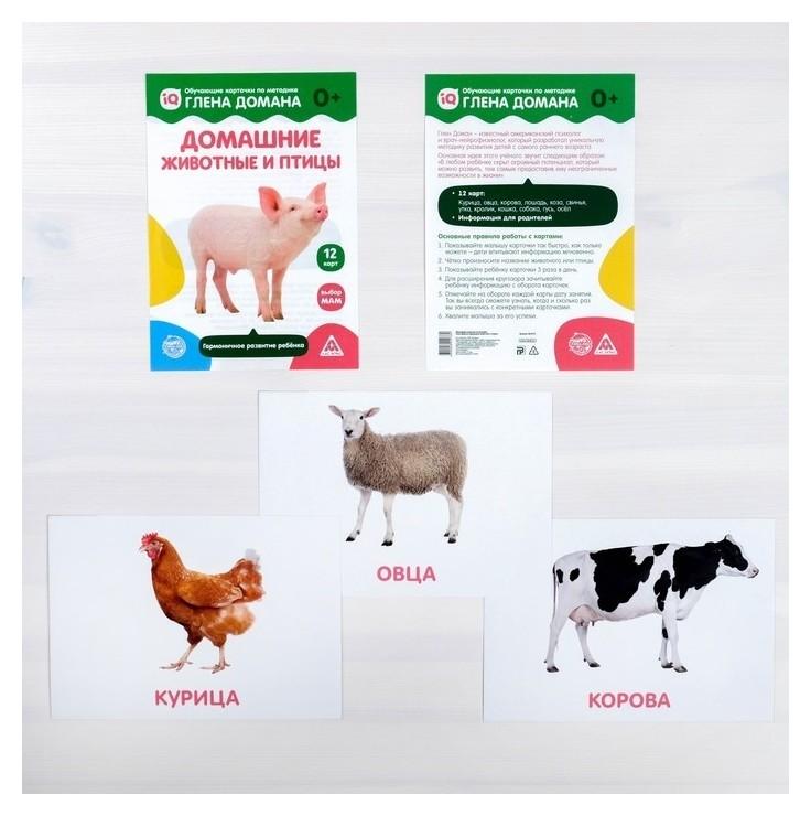 Обучающие карточки по методике Глена Домана «Домашние животные и птицы», 12 карт  Лас Играс