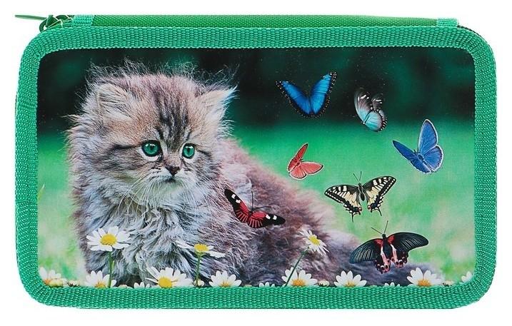 Пенал 3 секции Котёнок с бабочками  Оникс
