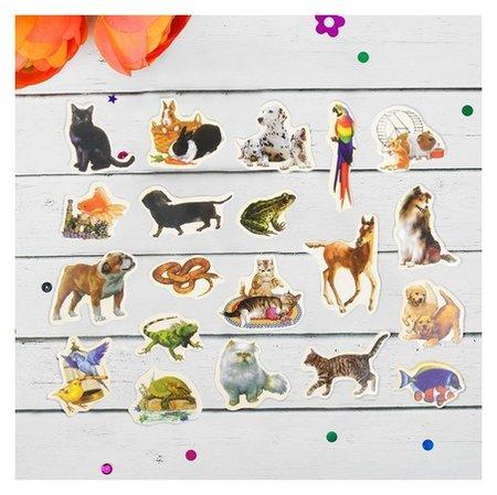 Набор магнитов Домашние животные 20 шт глянцевая наклейка  КНР Игрушки