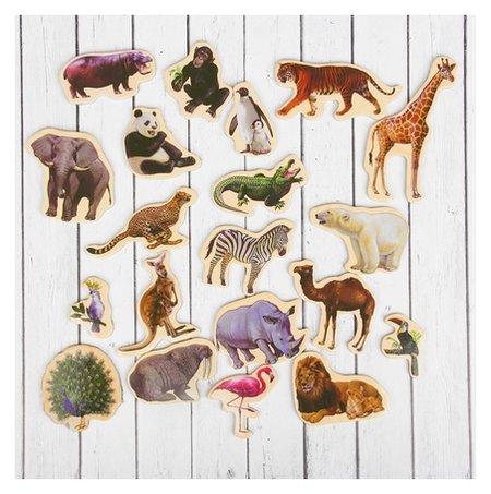 Набор магнитов «Дикие животные» 20 шт.  КНР Игрушки
