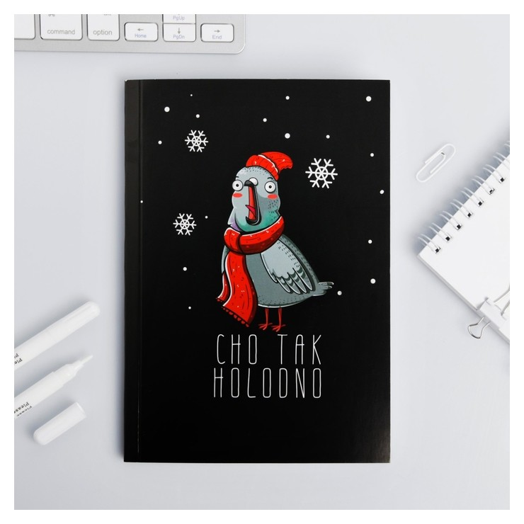 Ежедневник Зимняя коллекция CHO TAK HOLODNO, формат А5, 80 листов  ArtFox