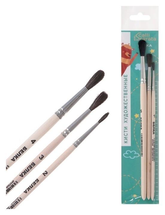 Набор кистей Белка 3 штуки №2 (круглые №: 2, 3, 4) ручка дерево  Calligrata