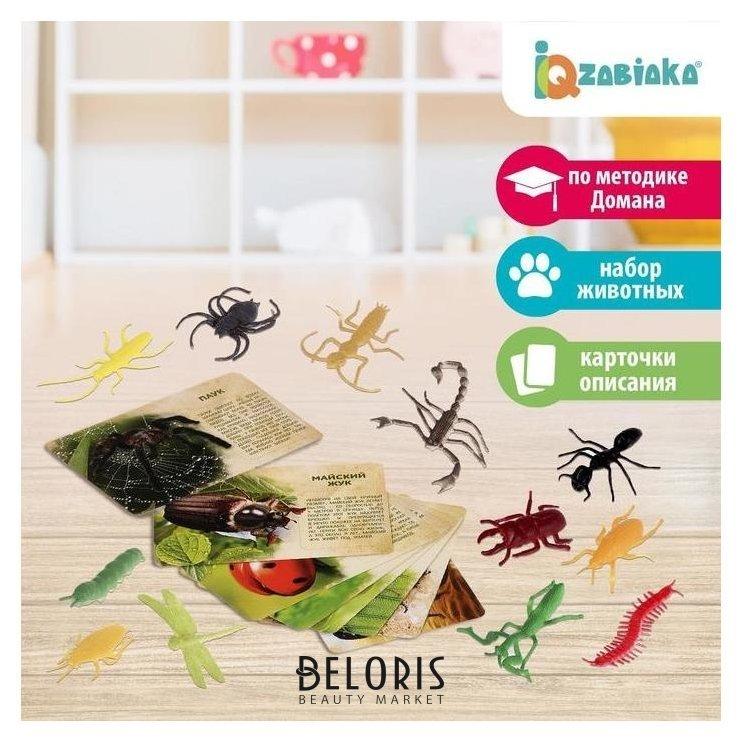 Набор животных с обучающими карточками В мире насекомых, животные пластик, карточки Iq-zabiaka