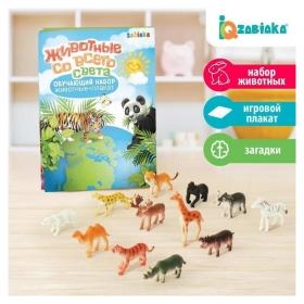 Обучающий набор Животные со всего света: животные и плакат
