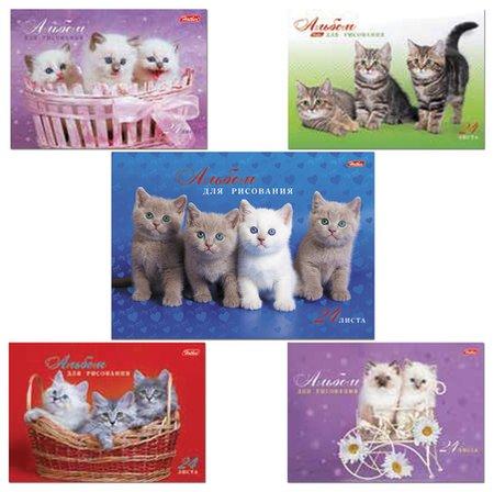 """Альбом для рисования, А4, 24 листа """"Милые котята""""  Hatber"""