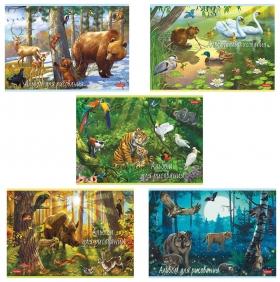 """Альбом для рисования, А4, 20 листов """"В сказочном лесу""""  Hatber"""