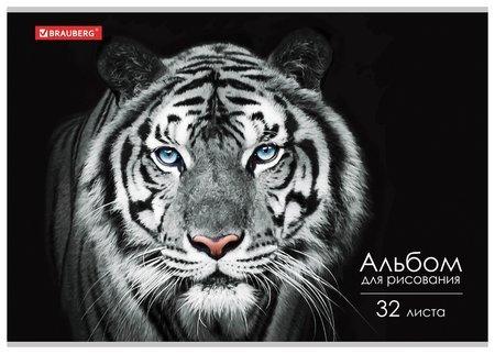 "Альбом для рисования А4 32 листа ""Тигр""  Brauberg"