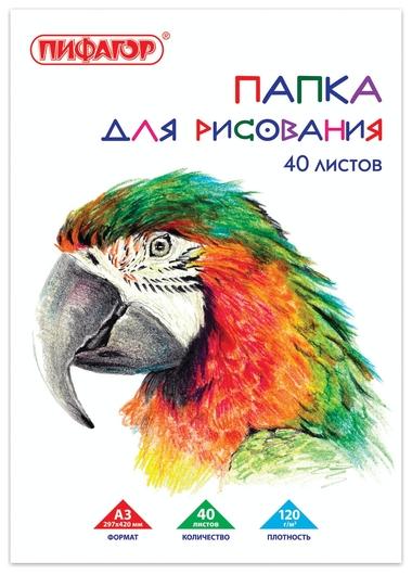 """Папка для рисования А3, 40 листов """"Попугай""""  Пифагор"""