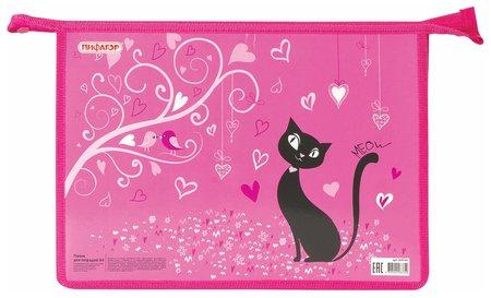 Папка для тетрадей А4, 1 отделение, картон, молния сверху Black Cat  Пифагор