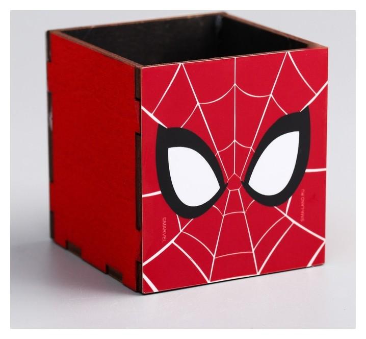 Органайзер для канцелярии Spider-man 65 х 70 х 65 мм  Marvel
