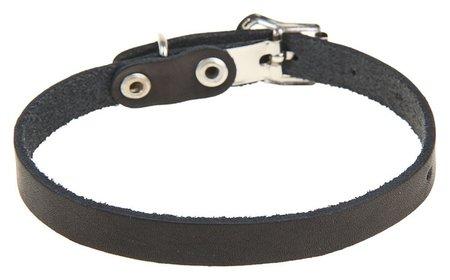 Ошейник кожаный однослойный, 30 х 1 см, черный  Compаnion