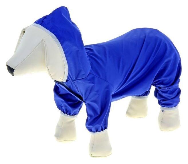 Комбинезон для собак, L (ДС 30 см, ОГ 38 см), синий  Compаnion
