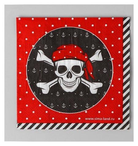 Cалфетки «Пират», 25х25 см, набор 20 шт.  Страна Карнавалия