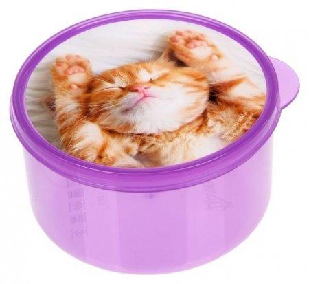 Ланч-бокс «Котёнок», 0.5 л  Доляна