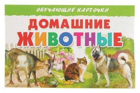 Обучающие карточки «Домашние животные»  Литур