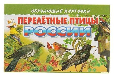 Обучающие карточки «Перелётные птицы россии», 16 карточек  Литур
