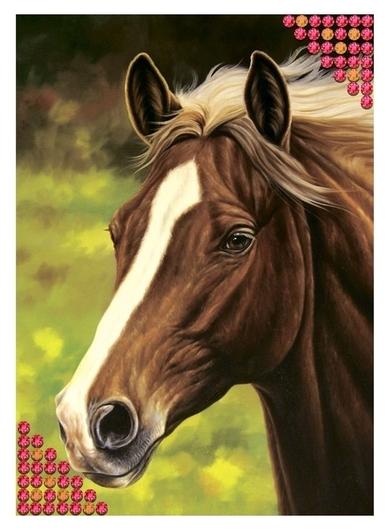 Алмазная вышивка с частичным заполнением «Лошадь», 15 х 21 см. набор для творчества  Школа талантов