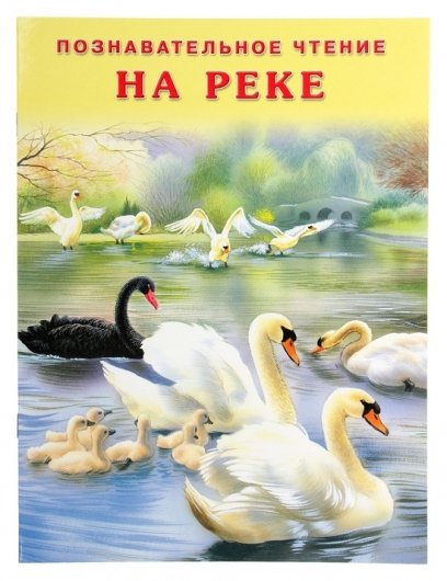 На реке Гурина И. В.  Издательство Фламинго