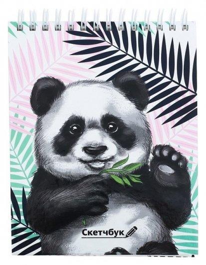 """Скетчбук на гребне """"Панда"""", твёрдая обложка, А6, 80 листов  ArtFox"""
