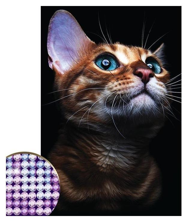 Алмазная вышивка с частичным заполнением «Взгляд кошки» 20 х 30 см на холсте  Школа талантов
