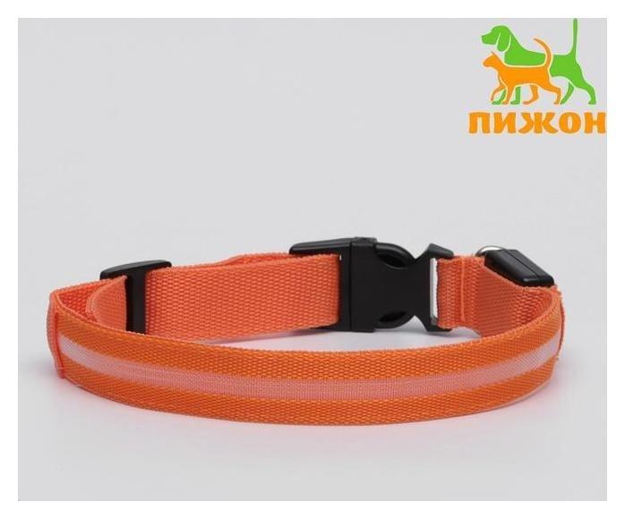 Ошейник с подсветкой, XL, 50-58 х 2,5 см, 3 режима свечения, оранжевый  Пижон