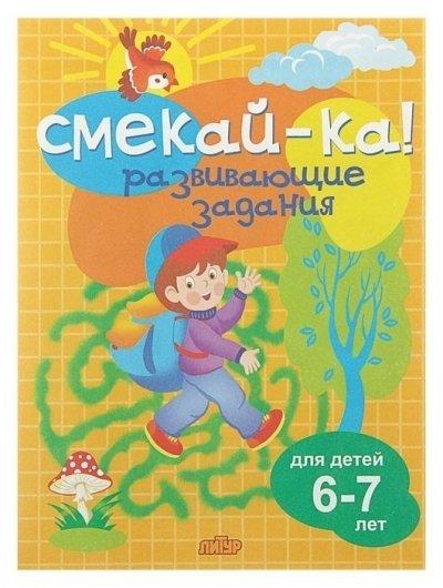 Развивающие задания для детей 6-7 лет. Бортникова Е. Ф.  Литур