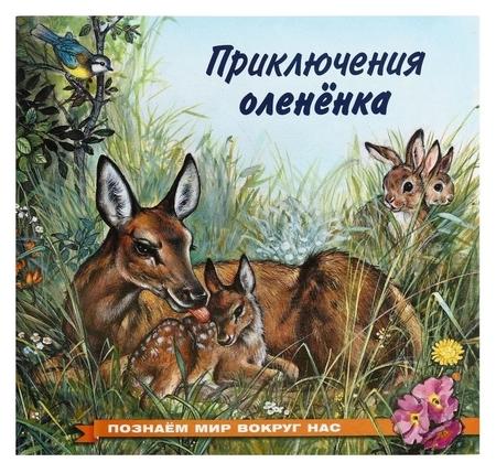 Познаём мир вокруг нас. приключения оленёнка, 16 стр.  Издательство Фламинго