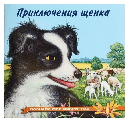 Познаём мир вокруг нас. приключения щенка, 16 стр.  Издательство Фламинго