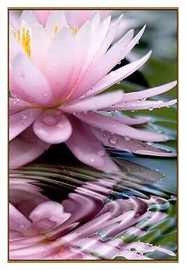 """Алмазная мозаика """"Священный цветок"""", 28 цветов  Milato"""