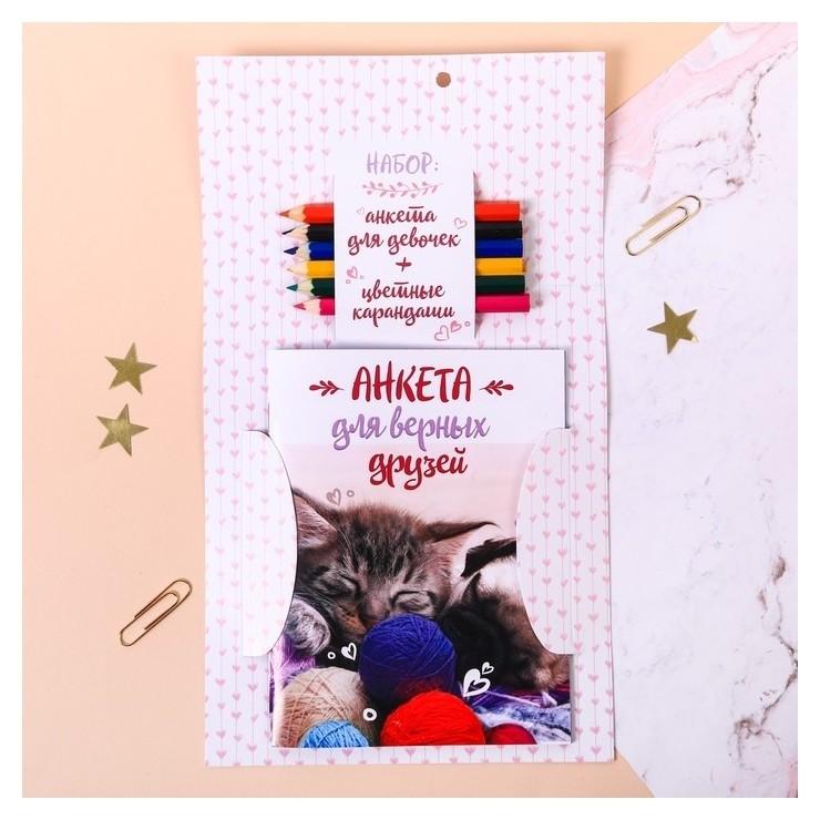 """Набор """"Котёнок и щенок"""": анкета для девочек, А6, 32 страницы и карандаши, 6 шт.  ArtFox"""