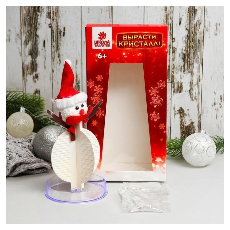 Набор для выращивания кристалла «Снеговик в шапочке»  Школа талантов