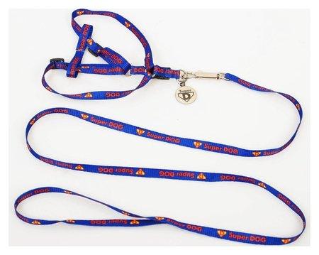 Комплект Super Dog: шлейка 28-47 см, поводок 120 см, адресник, макс вес 10 кг  Пушистое счастье