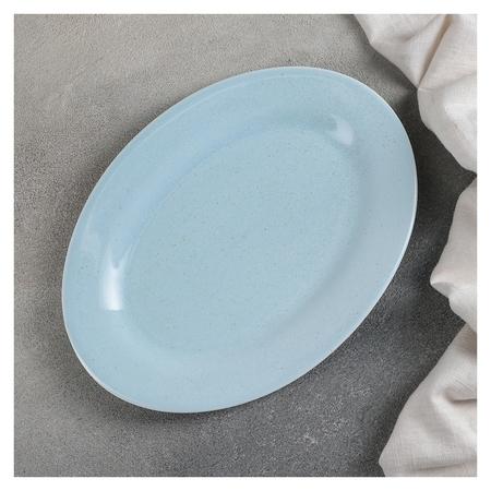 Блюдо «Амелия», 24,5×18 см, цвет голубой  Доляна
