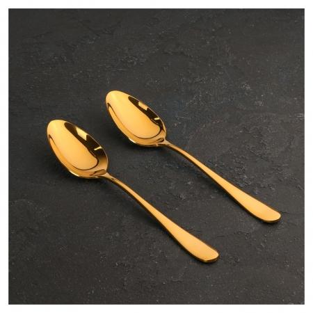Набор ложек столовых 21 см, цвет золотой  Wilmax England
