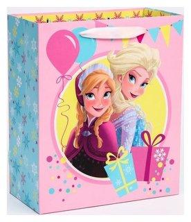 """Пакет ламинат вертикальный """"Холодное сердце"""", холодное сердце, 23х27х11,5 см Disney"""
