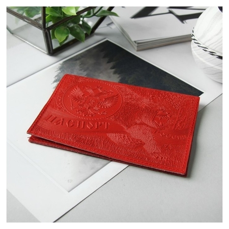 Обложка для паспорта, цвет красный  NNB