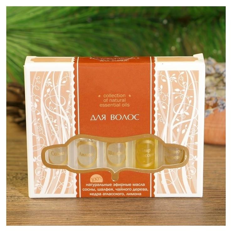 Набор эфирных масел Для волос Сосна, шалфей, чайное дерево, кедр, лимон  Lazurin