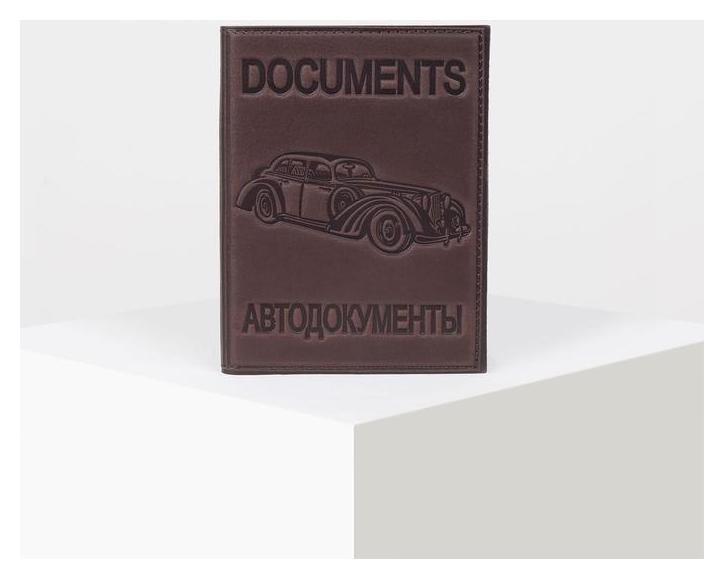 Обложка для автодокументов, с вкладышем, цвет конгрев коричневый  NNB
