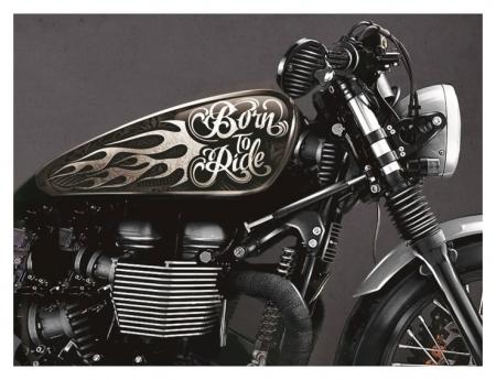 Набор наклеек на мотоцикл Born To Ride, 2 шт  NNB
