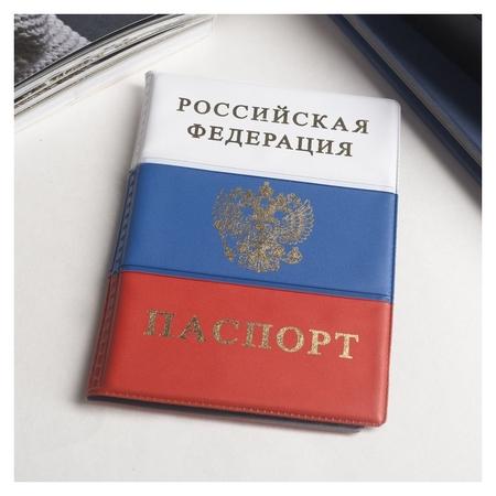 Обложка для паспорта, герб, триколор: размер 13,5 х 9,2 х 0,2 см